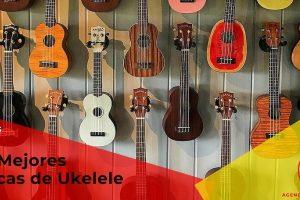 Las mejores Marcas de Ukelele