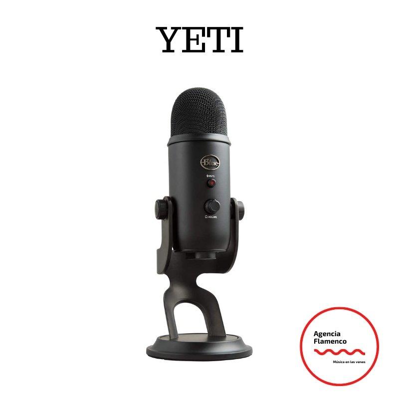 1 Blue Microphones Yeti