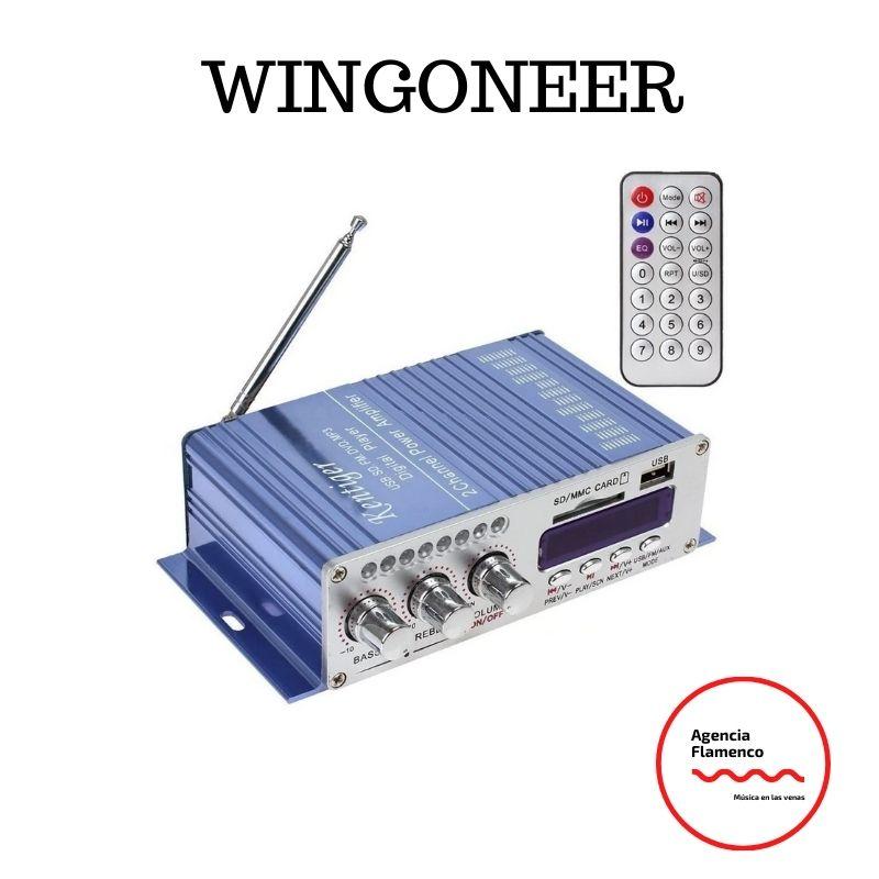 4. Amplificador marca Wingoneer