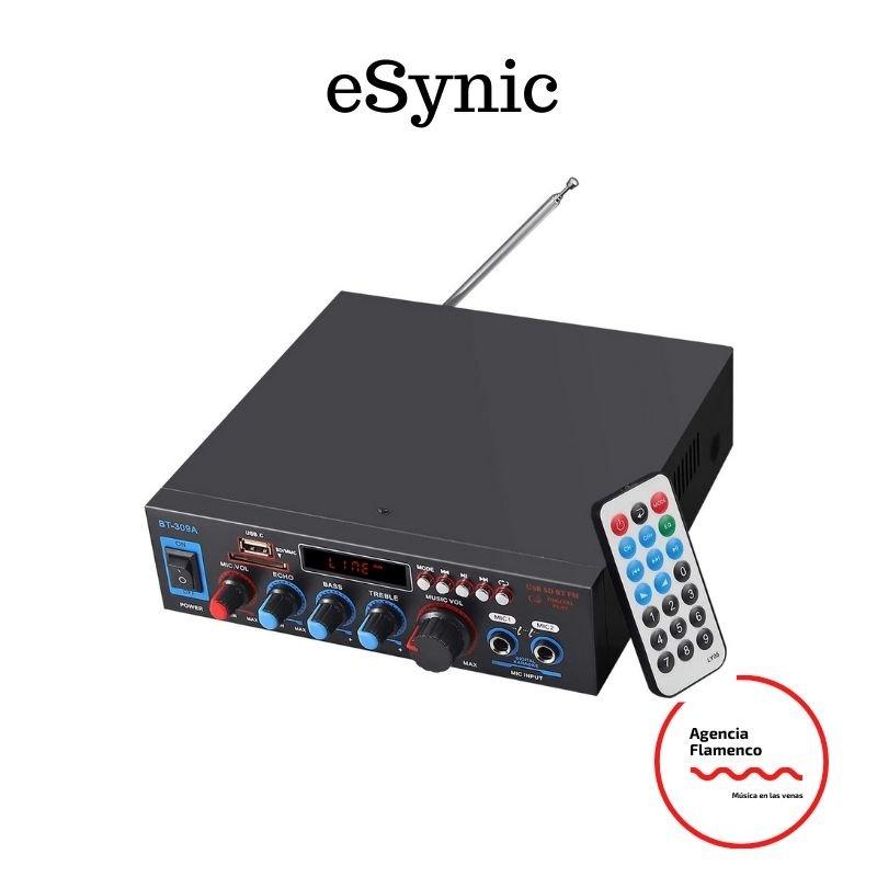 Amplificador de sonido eSynic