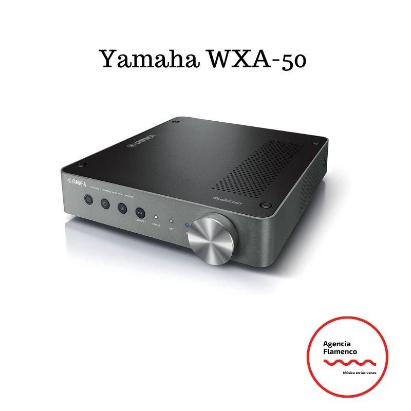 Amplificadores de sonido Yamaha WXA